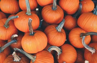 Why are Orange and Black the colours of Halloween?